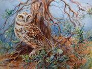 Burrowing Owl In Sage Brush