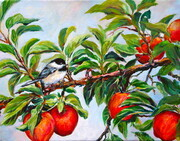 Chickadee on Apple Branch