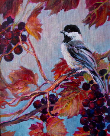 Chickadee on Grape Vine