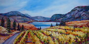 Okanagan Falls Golden Vines