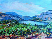 Okanagan Falls Vineyard View